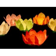6 lanternes floattantes