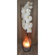 Vase cylindre avec une orchidée , des fibres coco et un led argent