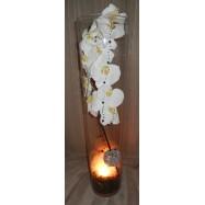 Vase cylindre avec une orchidée , des fibres coco et un led noir