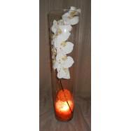Vase cylindre avec une orchidée , des fibres coco et un led orange