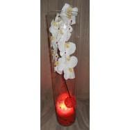 Vase cylindre avec une orchidée , des fibres coco et un led rouge