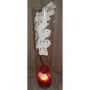 Vase cylindre avec une orchidée , des fibres coco et un led bordeaux