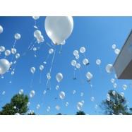 Ballon à l'helium 30 cm pastel